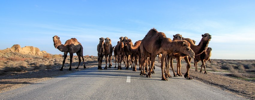 visit ashgabat