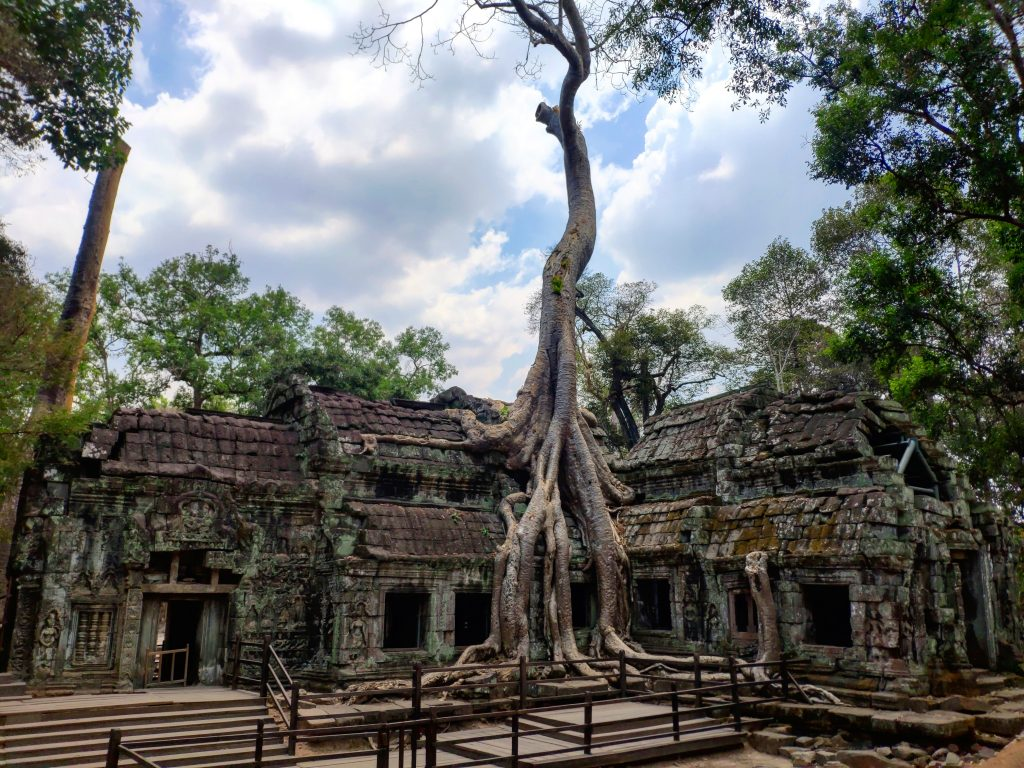 Cambodia open to tourism by October