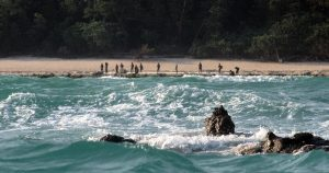 A far shot of the North Sentinel Island tribespeople standing on the beach.