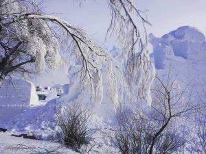 Harbin, a city of ice