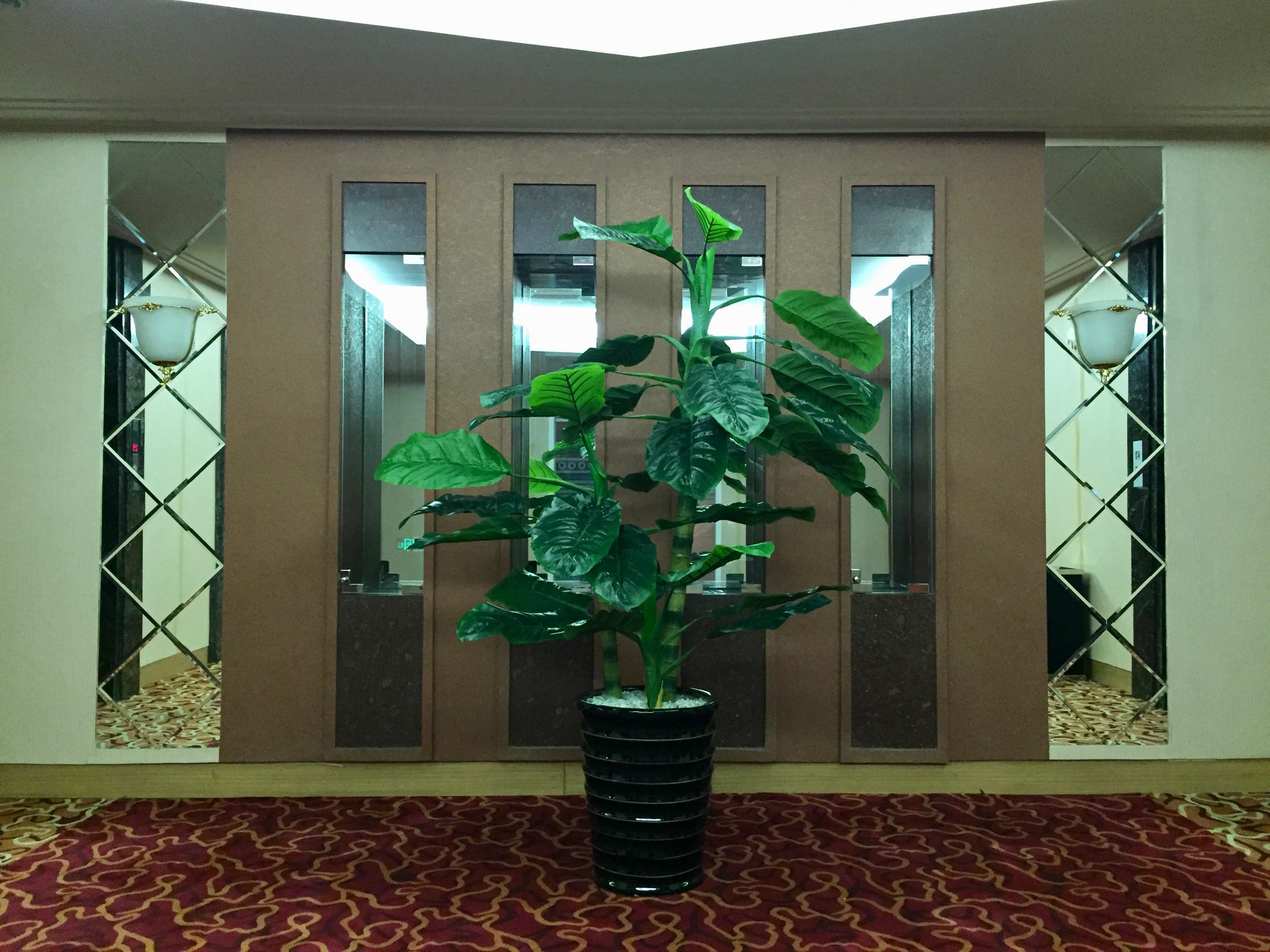 Corridors of the Sosan Hotel