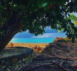 Peering at the Tuvalu coast