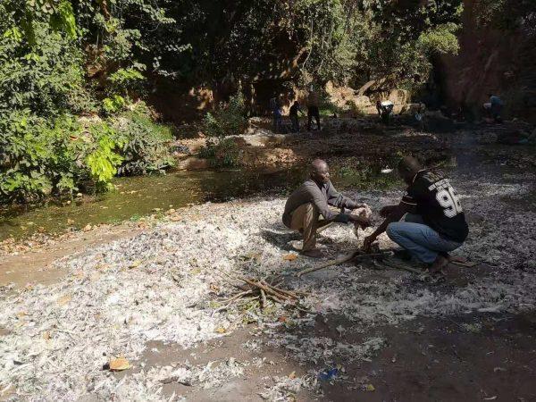 Preparing a chicken for sacrifice in Dafra