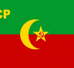 The flag of the Bukhrana People's Soviet Republic