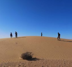 Our group walking around the dunes near Laayoune