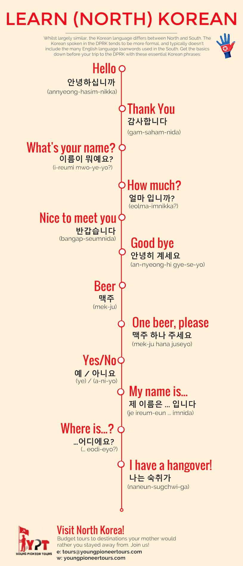 north korea language infographic
